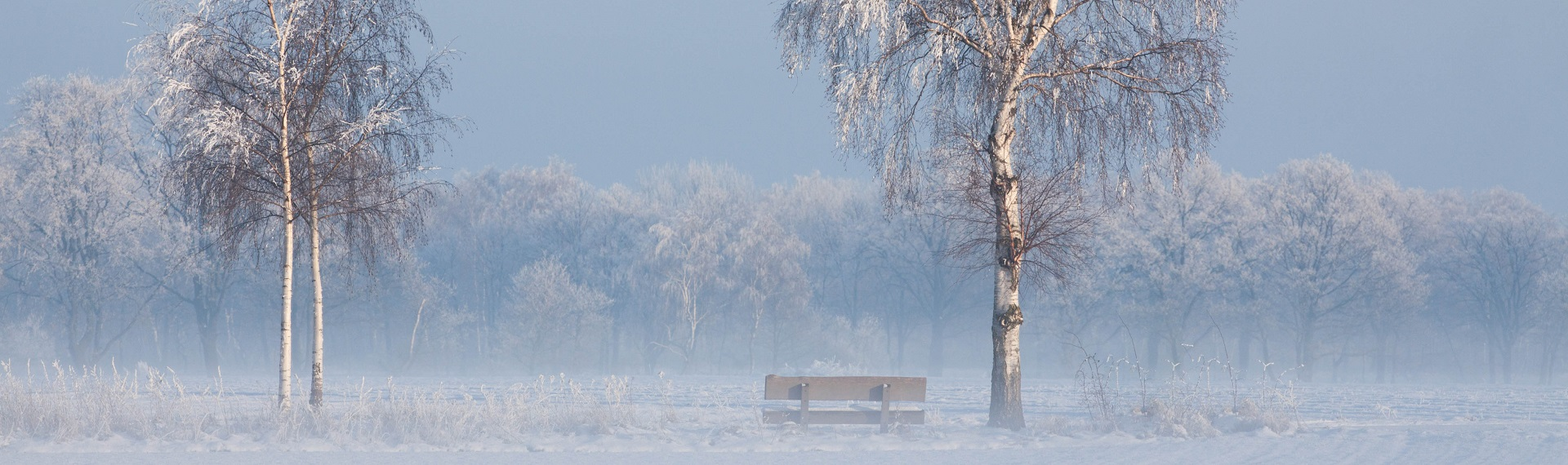 Winter mit Bank Schnee